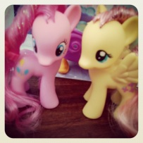 The latest additions to our pony family