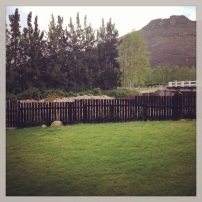 The view from the patio in Franschoek