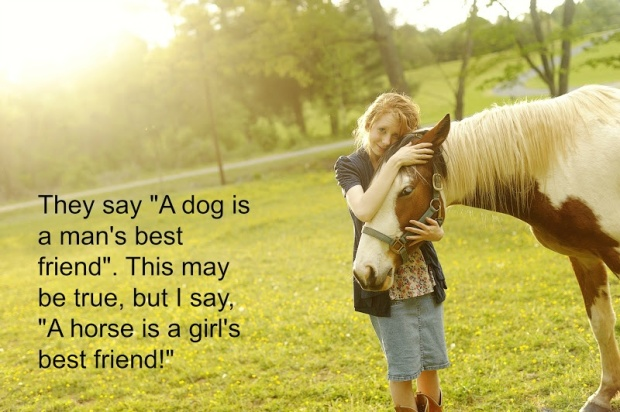 horse-quote-37-picture-quote-1